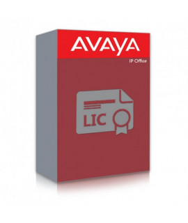 Avaya IP Office R10 Voicemail Pro 2 License