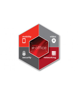 Avaya IPO R11 virtualized SE License